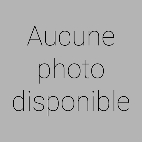 Renault SCENIC III - 1.2 TCE 115CH LIFE